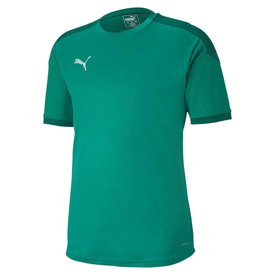 Puma Training Shirt Team FINAL 21 Grün
