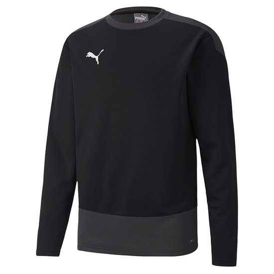 Puma Training Sweatshirt GOAL 23 Schwarz