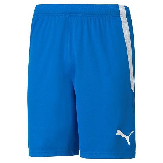 Puma Shorts Training TEAMLIGA Blau