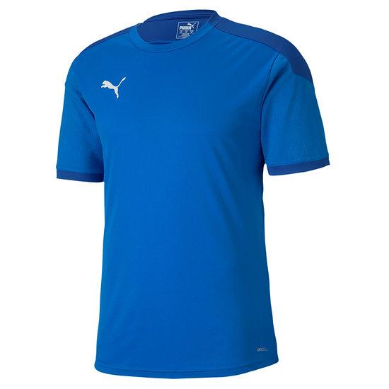 Puma Training Shirt Team FINAL 21 Blau