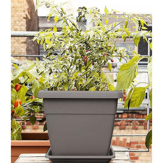 emsa My City Garden Blumenkübel eckig 35x35x30 cm granit